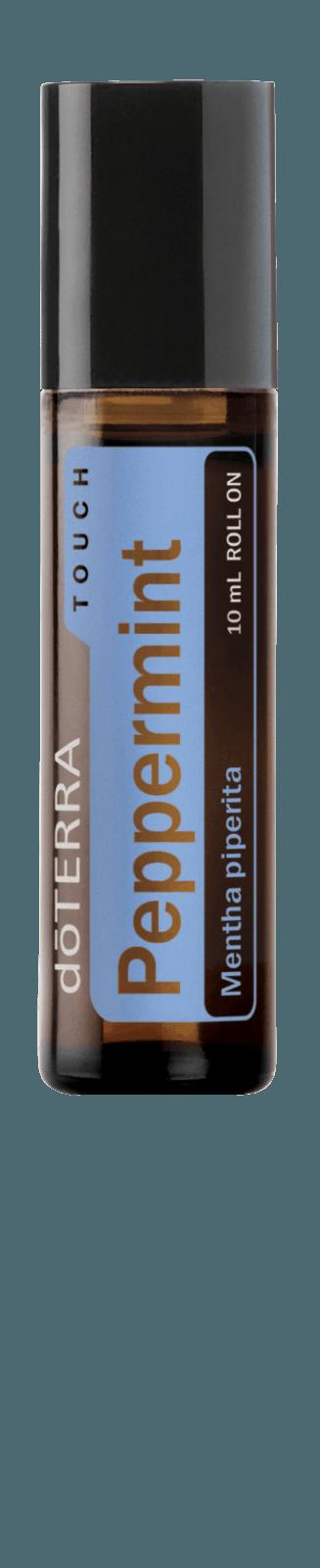 Pepermunt (mentha piperita)
